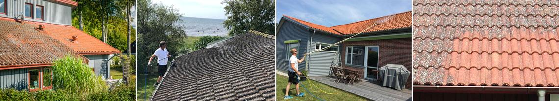 Grönfri. Ta bort, mossa alger och beläggning från tak.